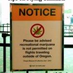 Bringing Cannabis on Airport